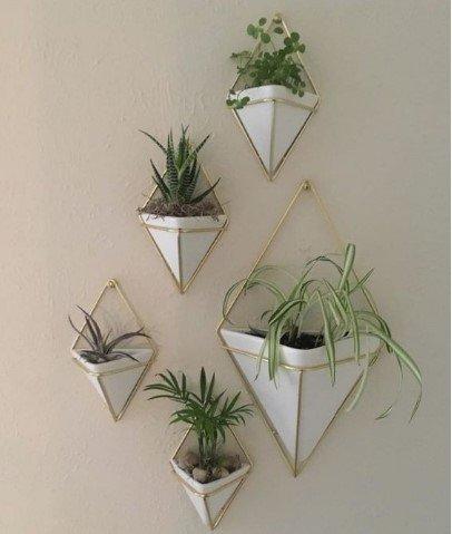 Γλάστρες με φυτά στον τοίχο
