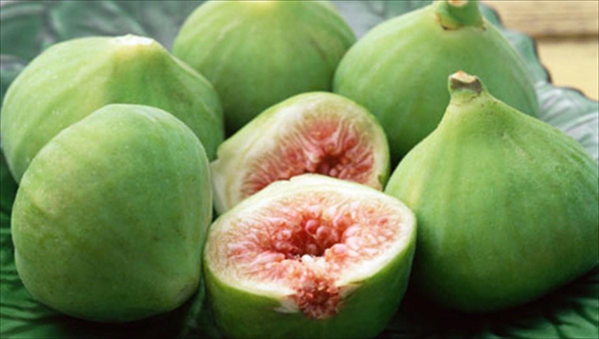 καλοκαιρινό φρούτο