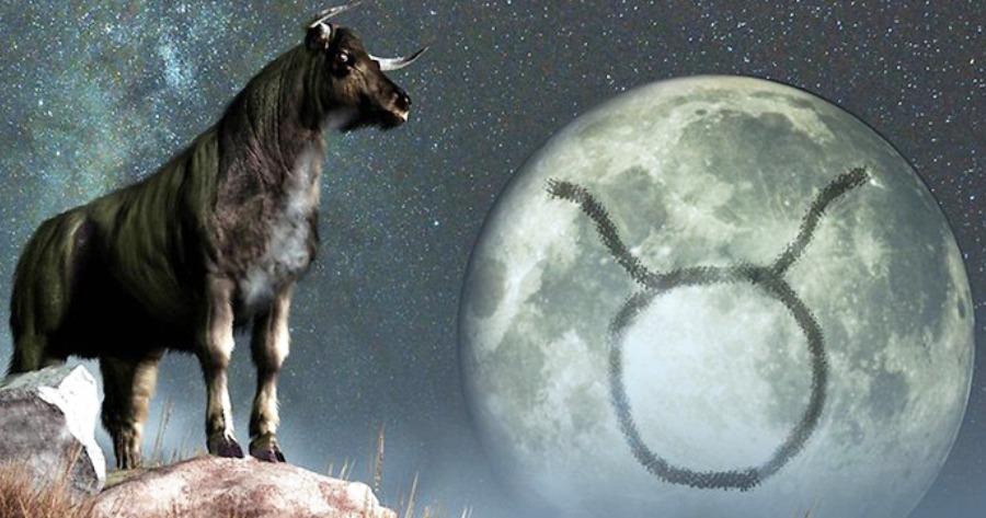 Ταύροι και εκνευρισμός