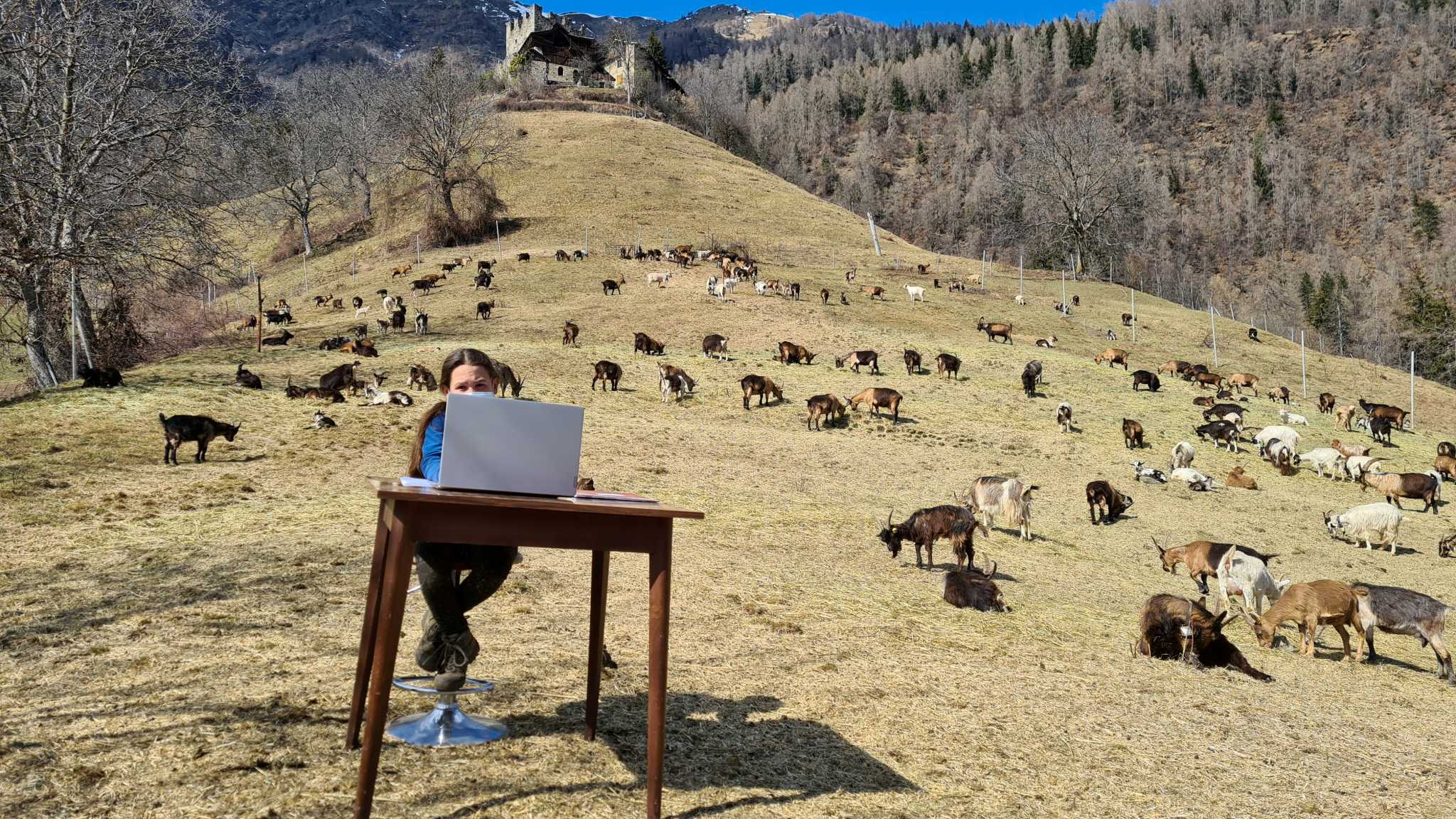 τηλεκπαίδευση στα βουνά