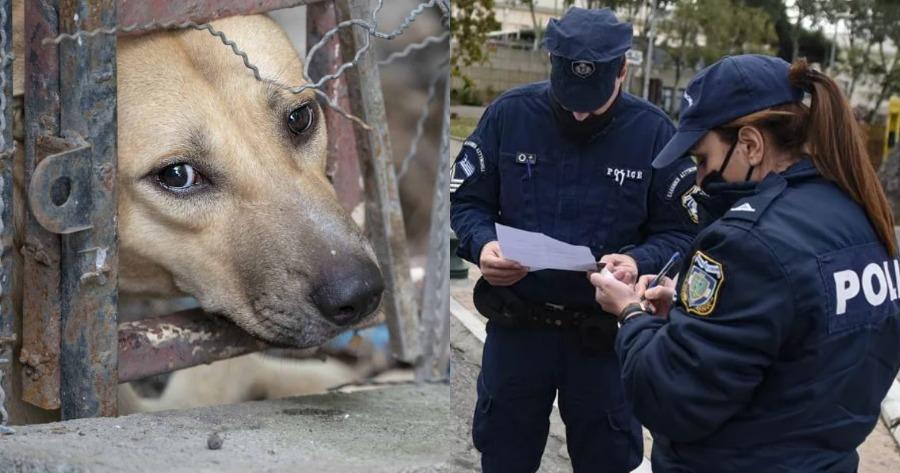 Δέχθηκαν πρόστιμο, ενώ προσπαθούσαν να αναφέρουν την παρουσία κακοποιημένου ζώου.