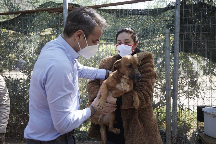 Ο Κυριάκος Μητσοτάκης υιοθέτησε σκυλάκι
