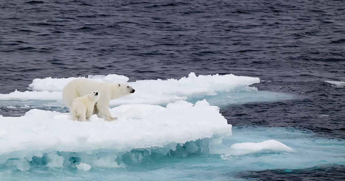 Κλιματική αλλαγή στην Αρκτική