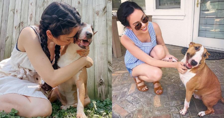 Youtuber έκανε ευθανασία σε σκύλο, διότι δάγκωσε το γιο της.