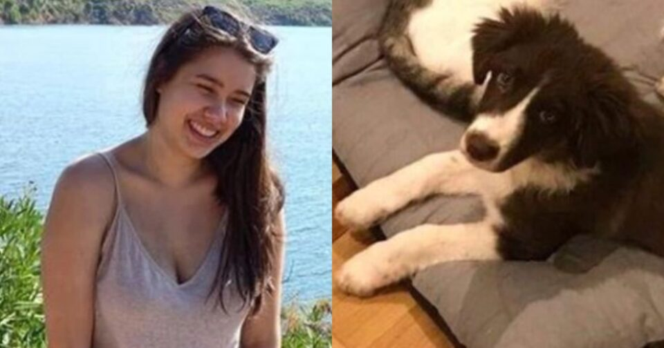 Έγκλημα στα Γλυκά Νερά: Το σκυλάκι της Κάρολαϊν που σκότωσε ο 32χρονος πιλότος για άλλοθι