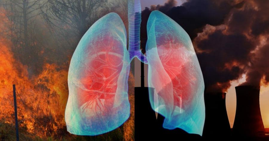 ΠΟΥ: Μέτρα προστασίας από τον καπνό και τα αιωρούμενα σωματίδια