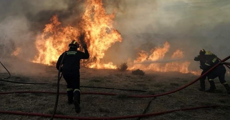 Σπάρτη:«Καλύτερη η κατάσταση με τη φωτιά στην περιοχή Καστάνια»