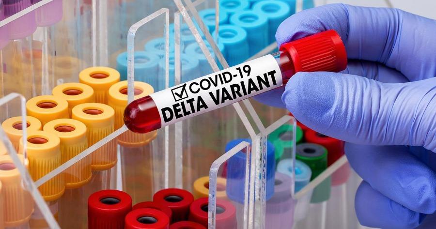 Παραλλαγή «Δ»: Δεν υπάρχει σημαντική διαφορά στο ιικό φορτίο εμβολιασμένων και μη